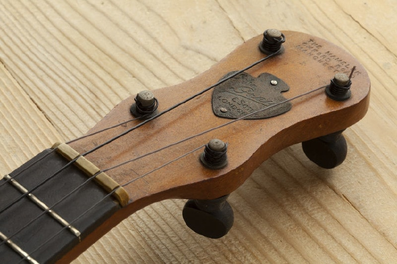 The banjo peg head which you would use to tne the banjo